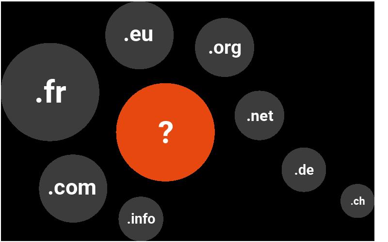 Extension de nom de domaine au choix : .fr, .com, .org, ...